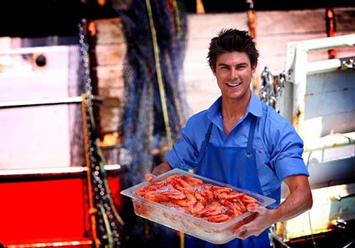 Moolooaba wharf - fresh seafood